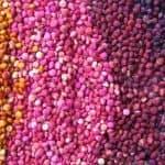 ricette quinoa ricette con quinoa polpette con quinoa