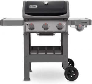 weber barbecue a gas
