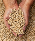 Barbecue a pellet | Come funziona, vantaggi, quale scegliere
